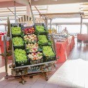 costa verde frutta